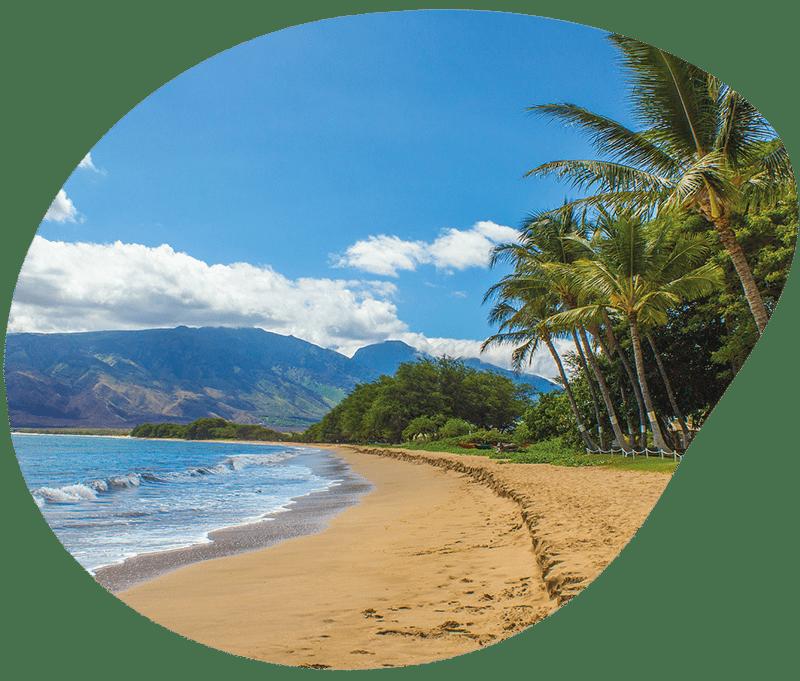 histoire hawaii1
